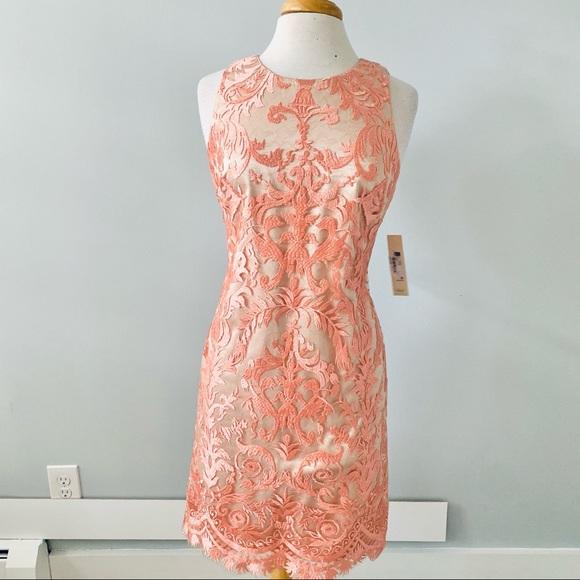 NWT Nordstrom Eliza J Pink Floral Shift Dress Sz 8